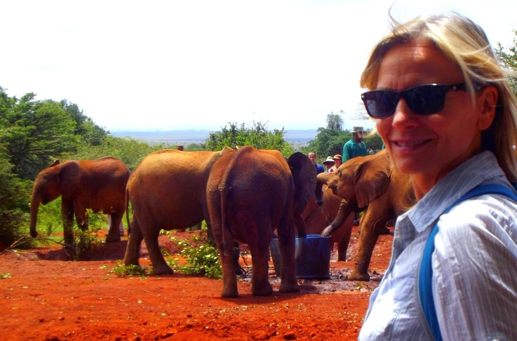 Safari Africa. Elephant orphanage. Life changing.