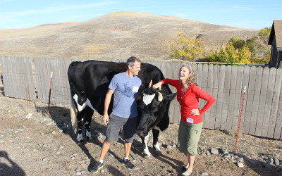 My first vegetarian Thanksgiving, Farm Sanctuary Celebration, and the winner of the Harvest Collection is…