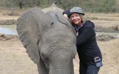 Back from Africa: Meeting Our Newest Elephant Orphan, Quanza (video!)
