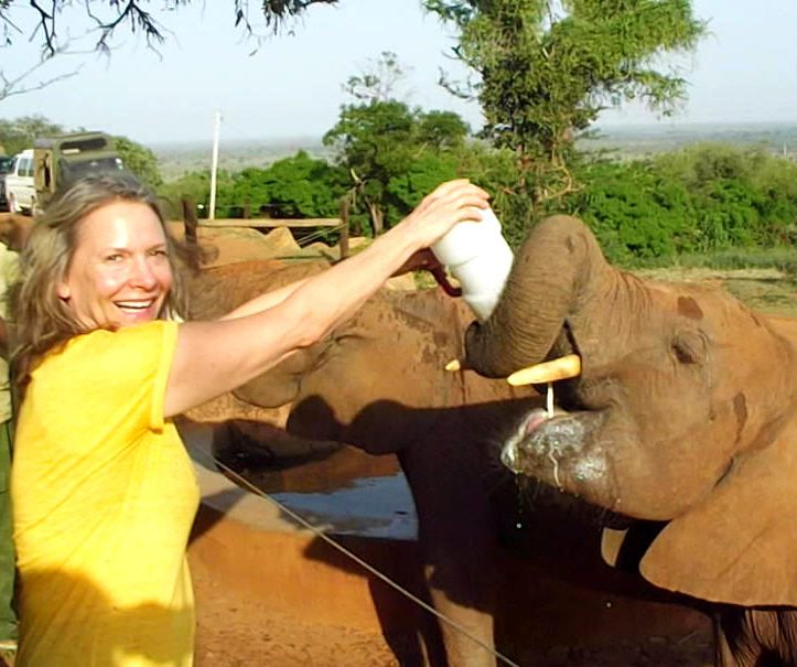 Seven Things I Love About Elephants & African Elephant Rescue Project (videos!)