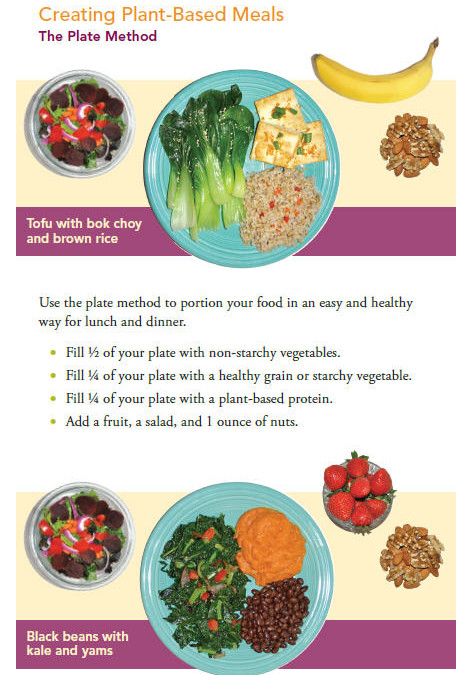 NEW Plant-Based Diet brochure download for you