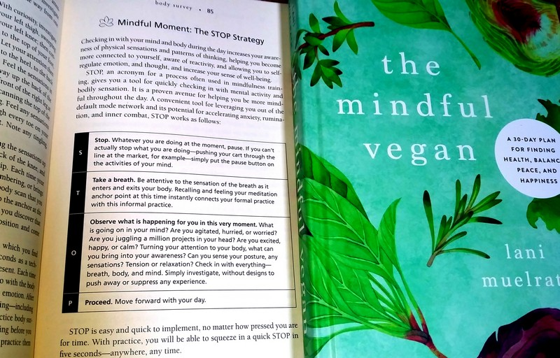 How Kathy Took Control of Pizza Cravings Using the S.T.O.P. Strategy From The Mindful Vegan Book